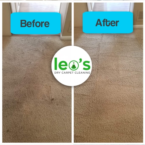 leo's dry carpet cleaning and stain removal